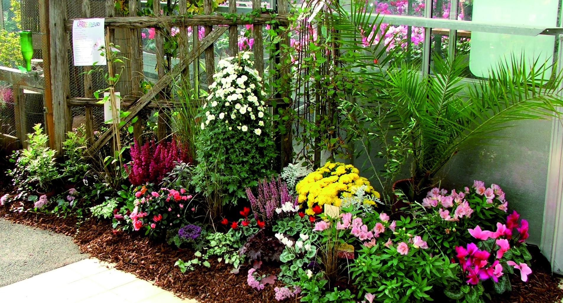 A faire au jardin en octobre - Le jardin d\'ornement