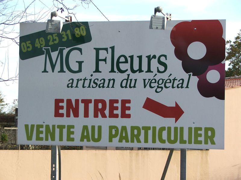 Label Artisan du végétal de MG Fleurs à COURS
